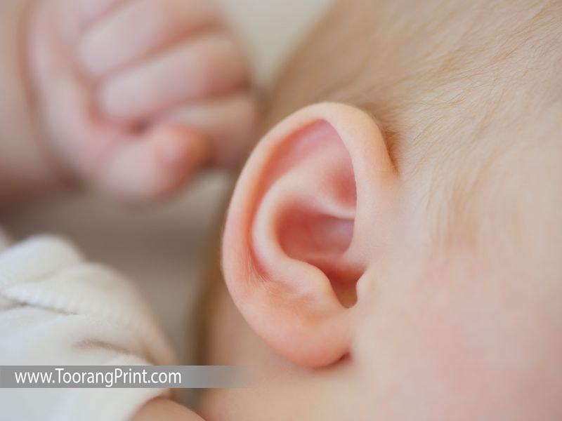 گوش سه بعدی