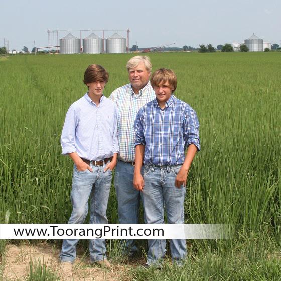 برنج آمریکایی امیر مختاری